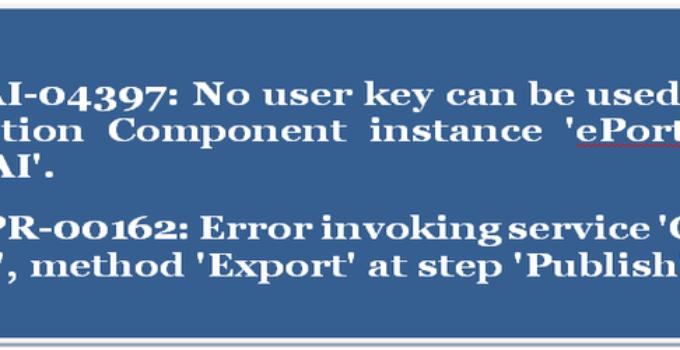 Siebel error code:SBL-EAI-04397 and SBL-BPR-00162